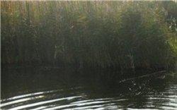 Турналыколь (Турналы)