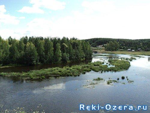 река кунья рыбалка