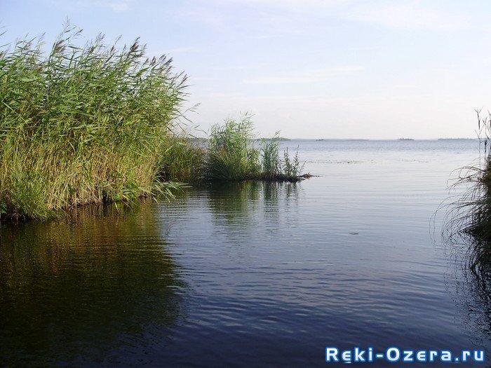 Прогноз погоды, который мы используем для рассчёта клёва рыбы в селе Аятское