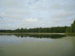 Карасье (Каменский район)