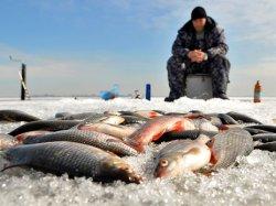 Любительская рыбалка может стать платной