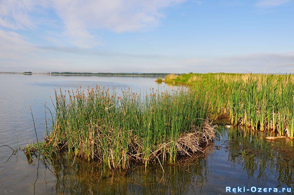 озера челябинской области рыбалка фото