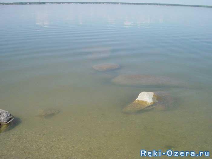 что клюет на озере большой куяш