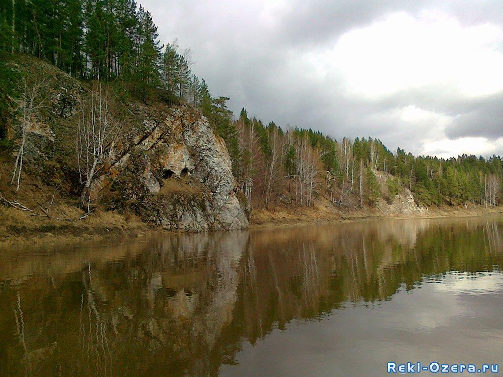 толстолобик екатеринбург