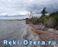 Замор рыбы на озере Багаряк
