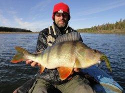 Осенние трофеи. Какую рыбу можно поймать осенью.