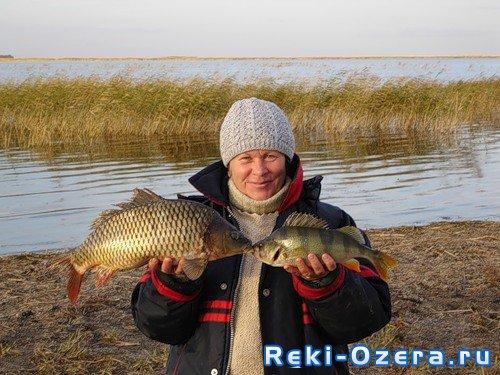 озера для рыбалки курганской обл на