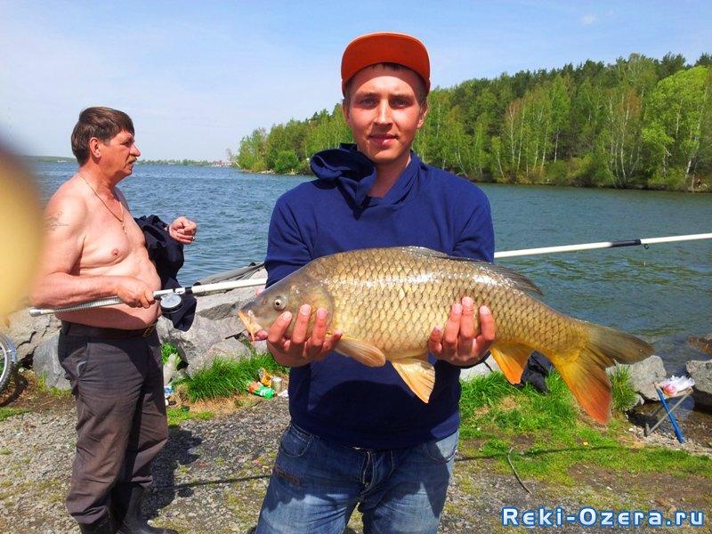 шадринск рыбалка отчеты