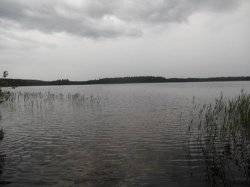 Могильное (Щучанский район)