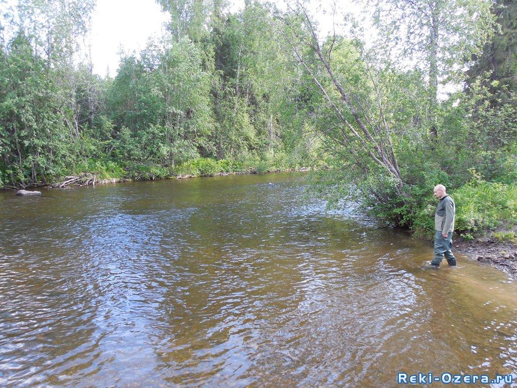 река ауспия рыбалка
