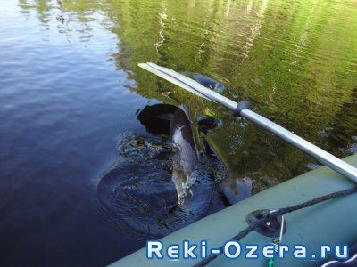 Рыбалка на верхней Лозьве