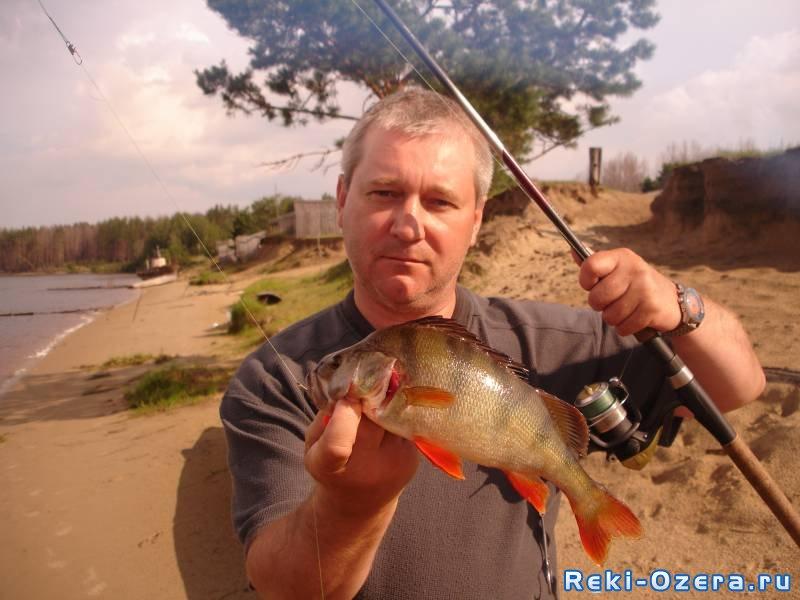 охота и рыбалка в курганской обл