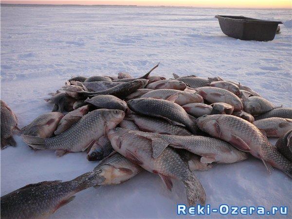 озеро песчаное отчеты о рыбалке