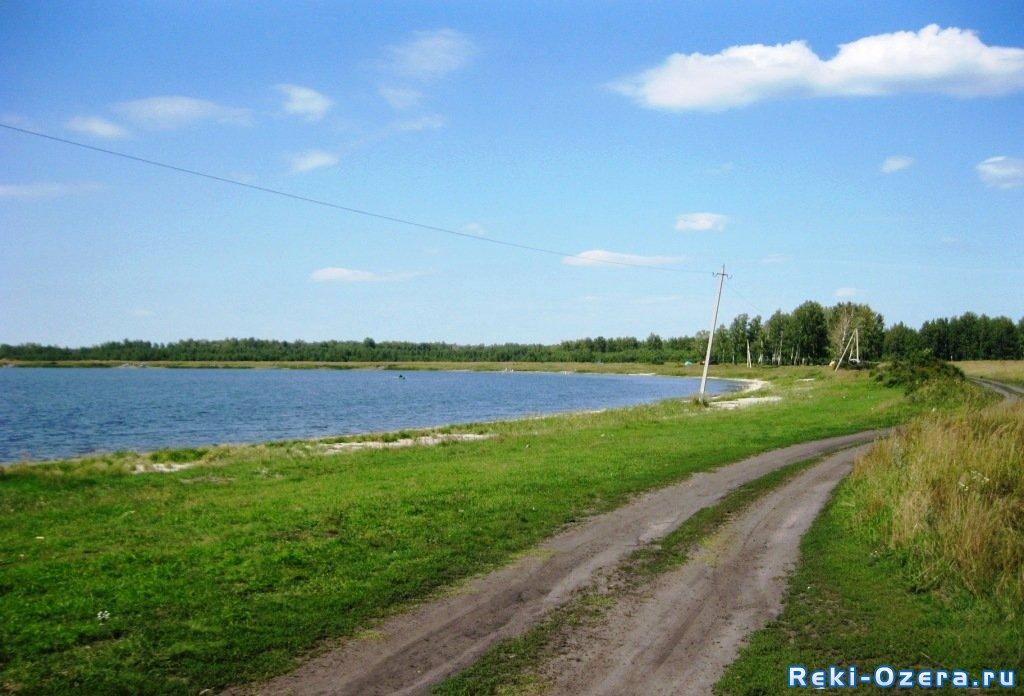 клев на озере кривское