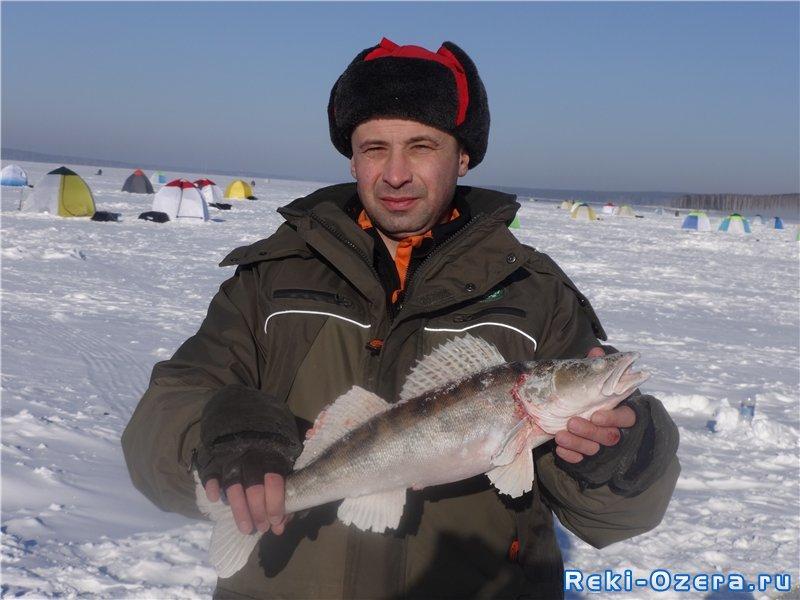 форум рыбаков курганской области новости с водоемов 2016 форум