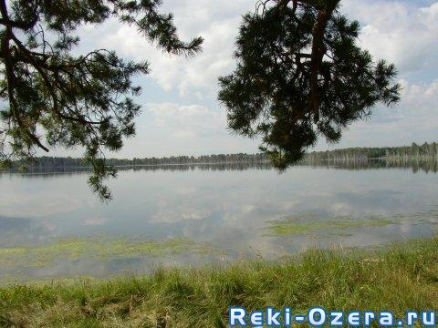 озеро пески курганской области для рыбалки