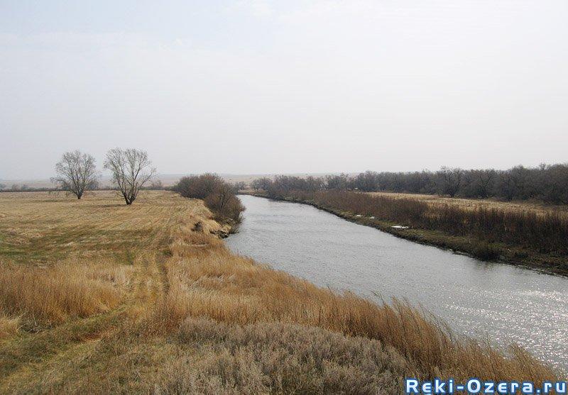 В реке Миасс в Челябинске водятся огромные лещи