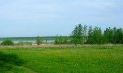 Березовское (Белоярский район)