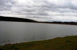 Мариинский пруд
