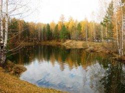 Дегтярский (Вязовский) пруд