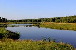 Исинский пруд (Верхнесалдинский район)