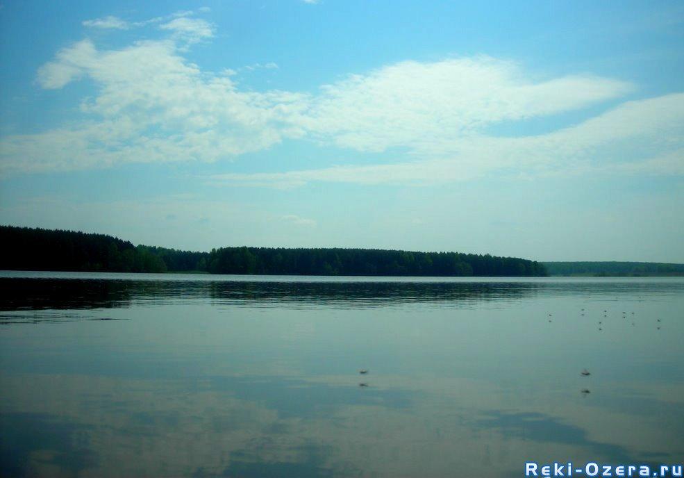Новости кировского района санкт петербург
