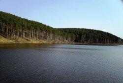 Патрушихинский пруд