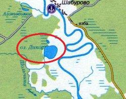 Дикое (Гаринский район)