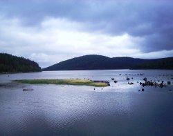 Киалимское водохранилище