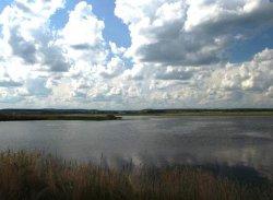 Филимоновский пруд (р. Кокуй)