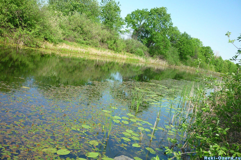рыбалка в сосново-озерское