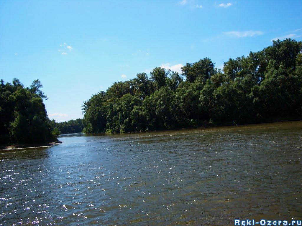 река держа тверская область рыбалка
