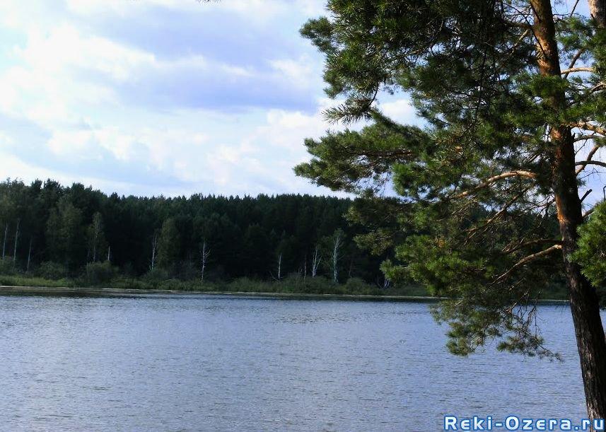 река белый атиг рыбалка