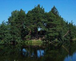 Тугулымский пруд