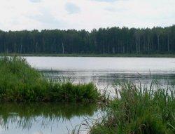 Орлово (Шатровский район)