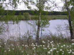 Щучье (Притобольный район)