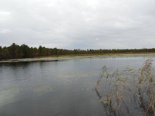 Рыбалка в ХМАО осенью.