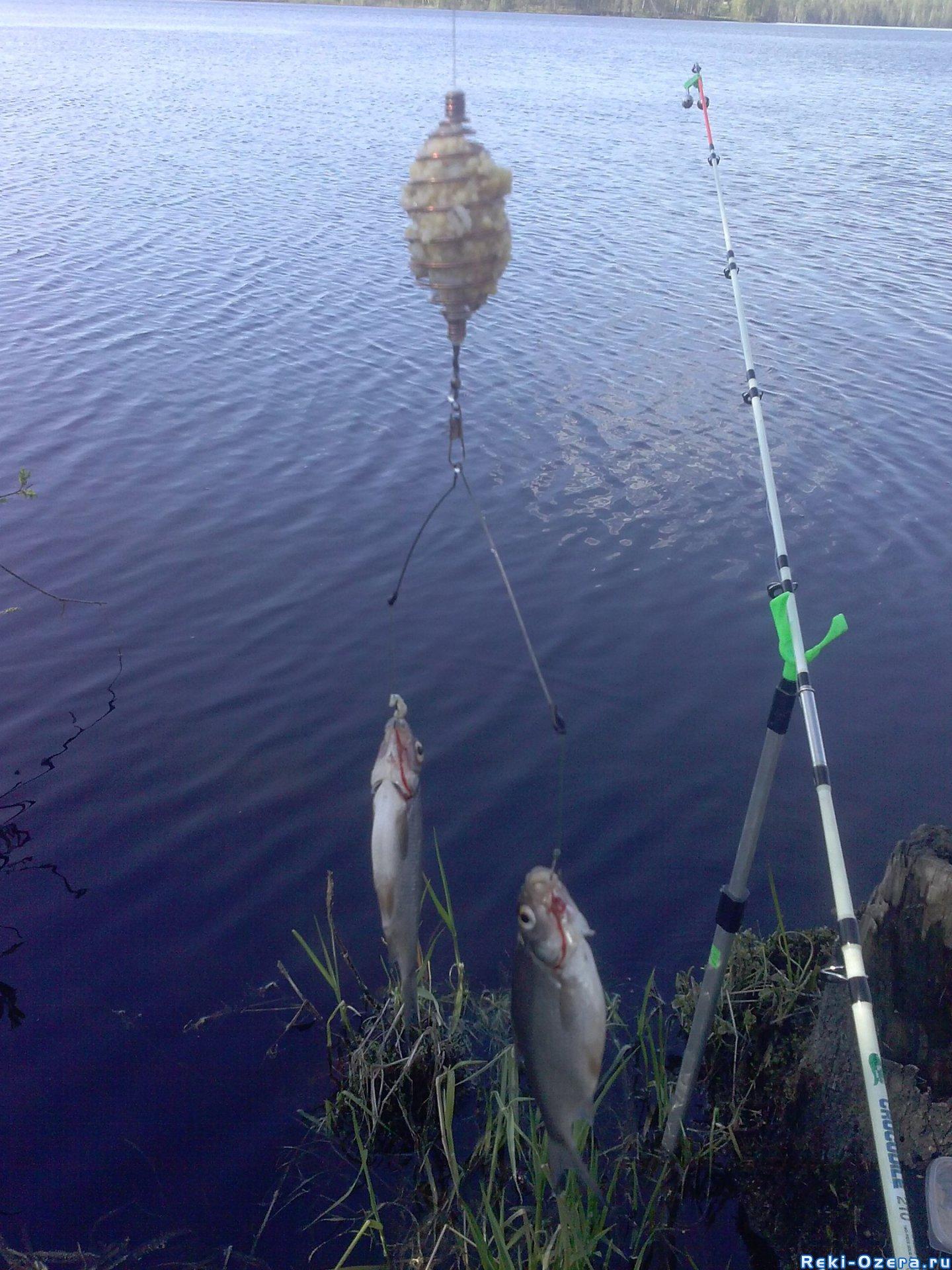 рыбалка на юлаше