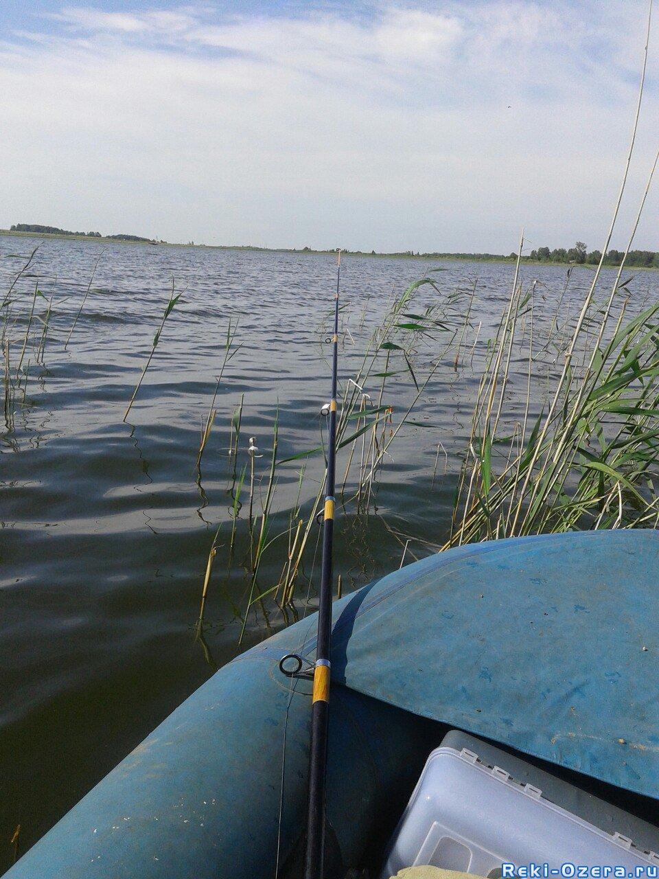 озеро могильное рыбалка 2016