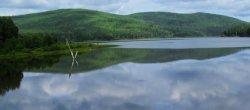 Малосаткинское водохранилище (Бакальский питьевой пруд)