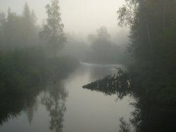 Пожва (приток Тыпыла)